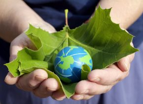 Delivering sustainability in the supply chain