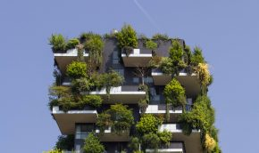 Reducing Carbon and Improving Building Energy Performance